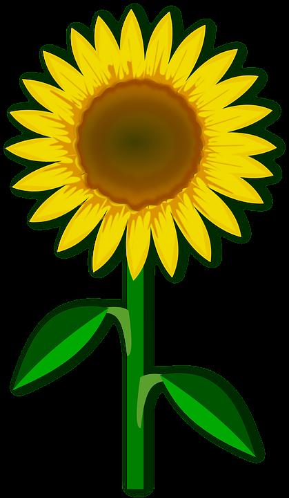 Kostenlose Vektorgrafik: Clipart, Flor, Flora, Blume, Natur.