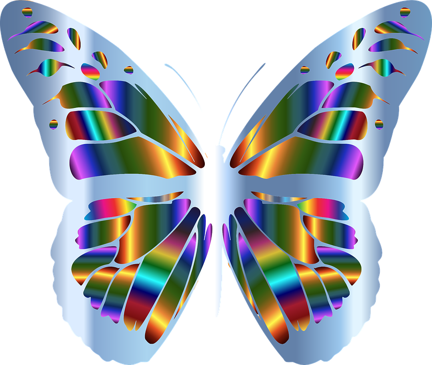 Free vector graphic: Abstract, Animal, Art, Butterfly.
