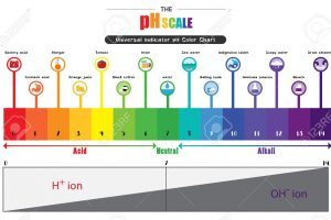 Ph scale clipart » Clipart Portal.
