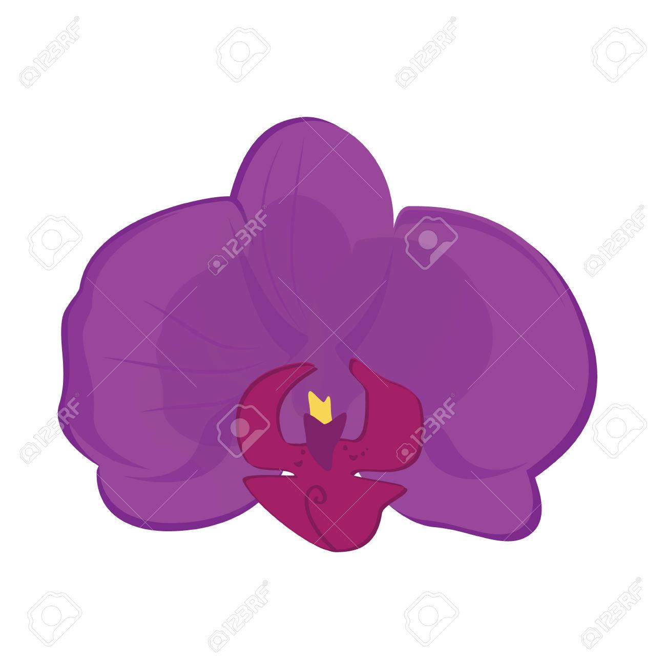 Vector Illustration Beautiful Purple Orchid Flower. Flower Blossom.