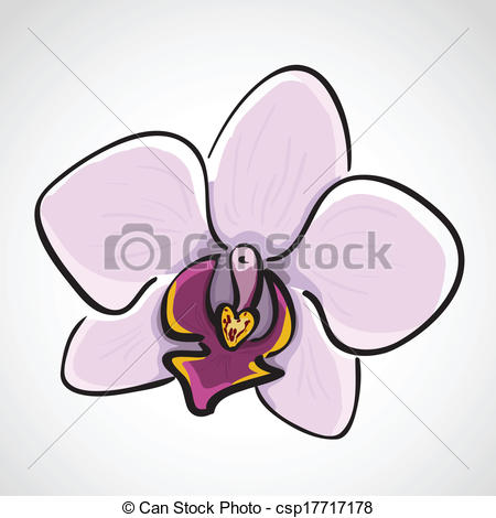 Vectors Illustration of Hand drawn orchid.