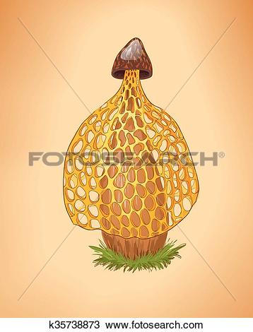 Clipart of Rare yellow mushroom illustration.Cartoon vector fungus.