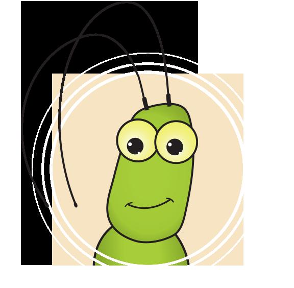 Insect Interviews: Kevin the Bush Katydid, Scudderia pistillata.