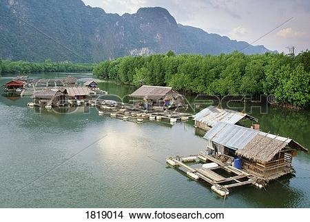 Stock Photo of House boats and fish farm on river, Phang Nga.