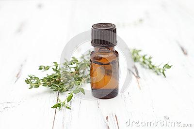Fresh Thyme Sprigs On White Stock Image.
