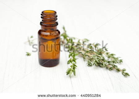 Thyme Stock Images, Royalty.