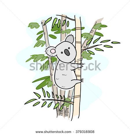 Koala Stock Photos, Royalty.