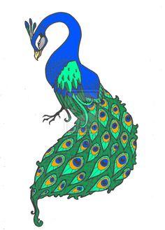 Peacock Drawings.