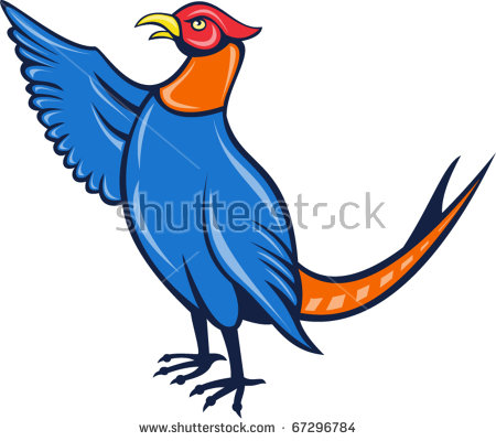 Pheasant Cartoon Stock Photos, Royalty.