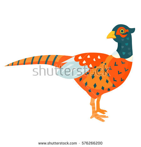Pheasant Cartoon Stock Images, Royalty.