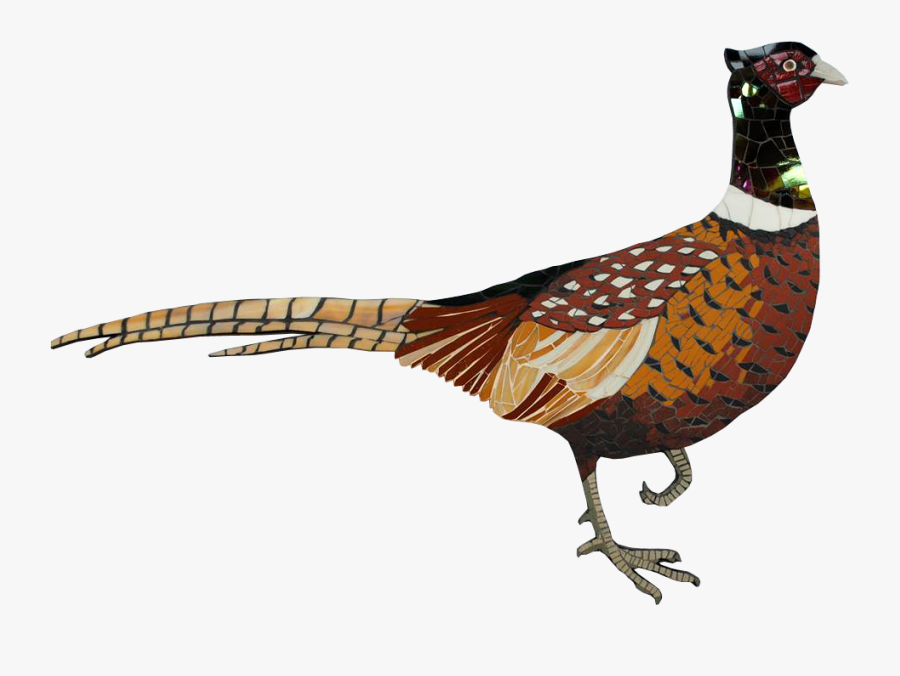 Transparent Pheasant Clipart.
