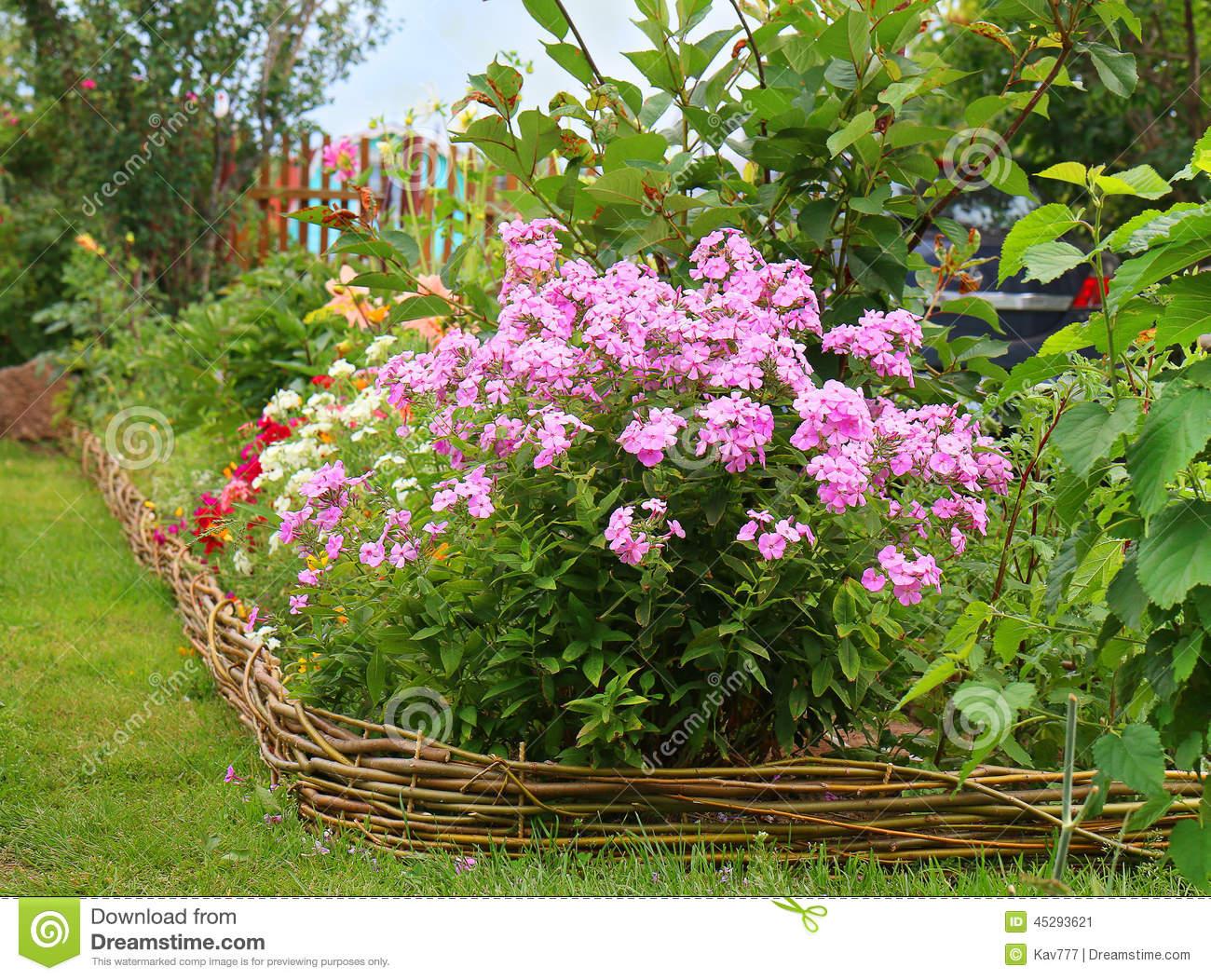 Ideas For Garden.