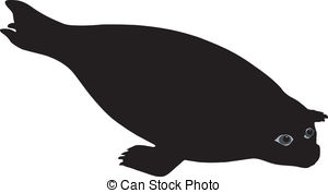 Phoca Illustrations and Clip Art. 45 Phoca royalty free.
