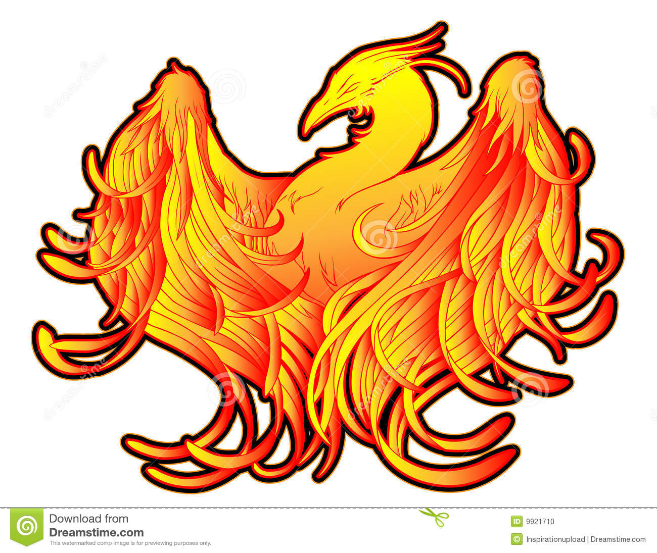 Phoenix Fire Tattoo Stock Photo.