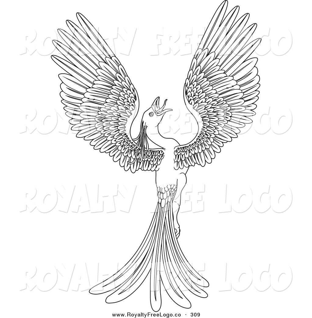 Phoenix Bird Outline Pictures to Pin on Pinterest.