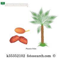 Phoenix palm Clipart Vector Graphics. 18 phoenix palm EPS clip art.