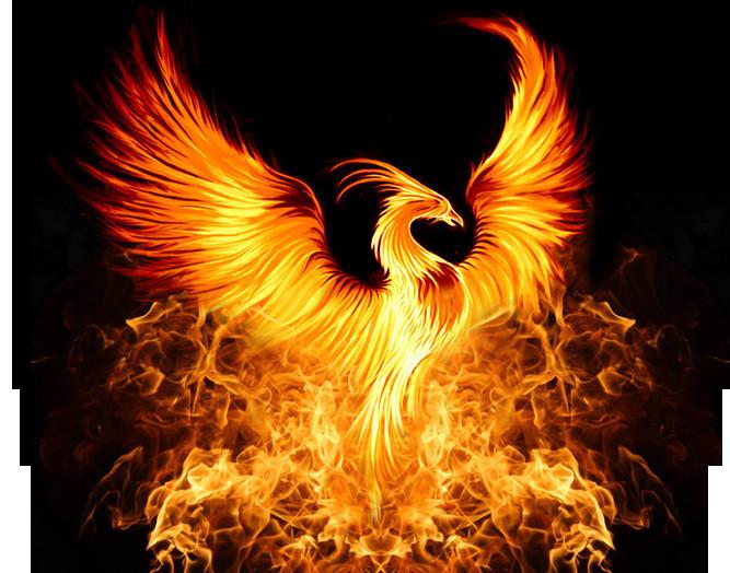 Phoenix PNG Images Transparent Free Download.