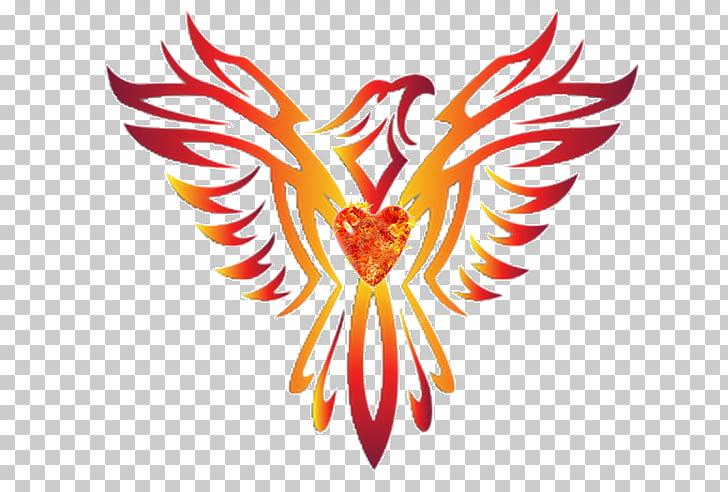 Phoenix graphics Zazzle, Phoenix wings PNG clipart.