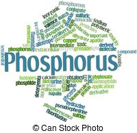 Phosphorus Illustrations and Clip Art. 603 Phosphorus royalty free.