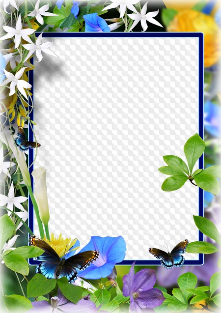 PSD, PNG, Photo frame, Summer flowers background.