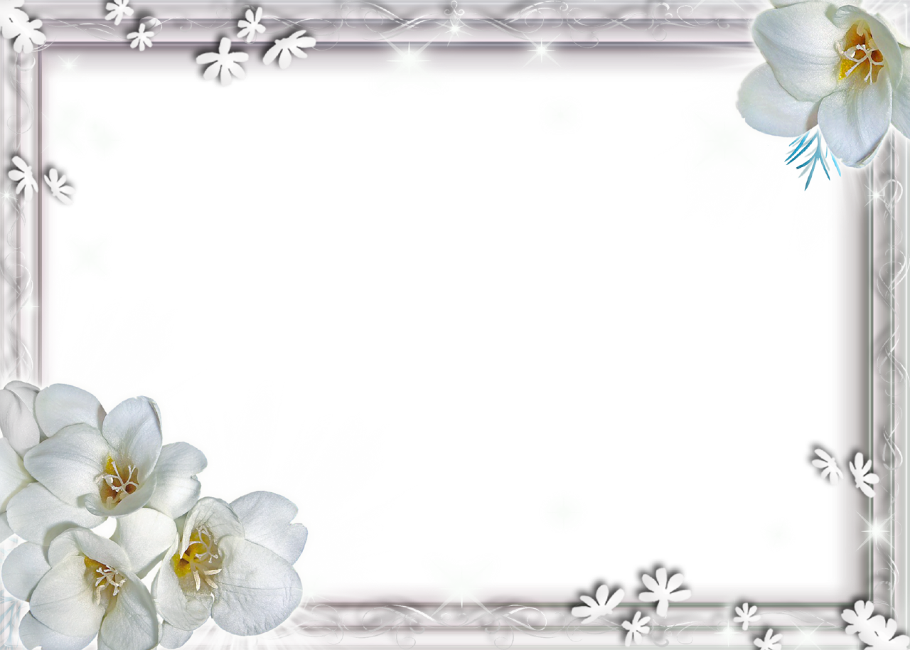 Download White Flower Frame PNG File.