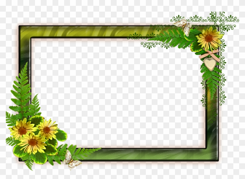 Flower Frame Png, Png Format, Frames, Backgrounds,.