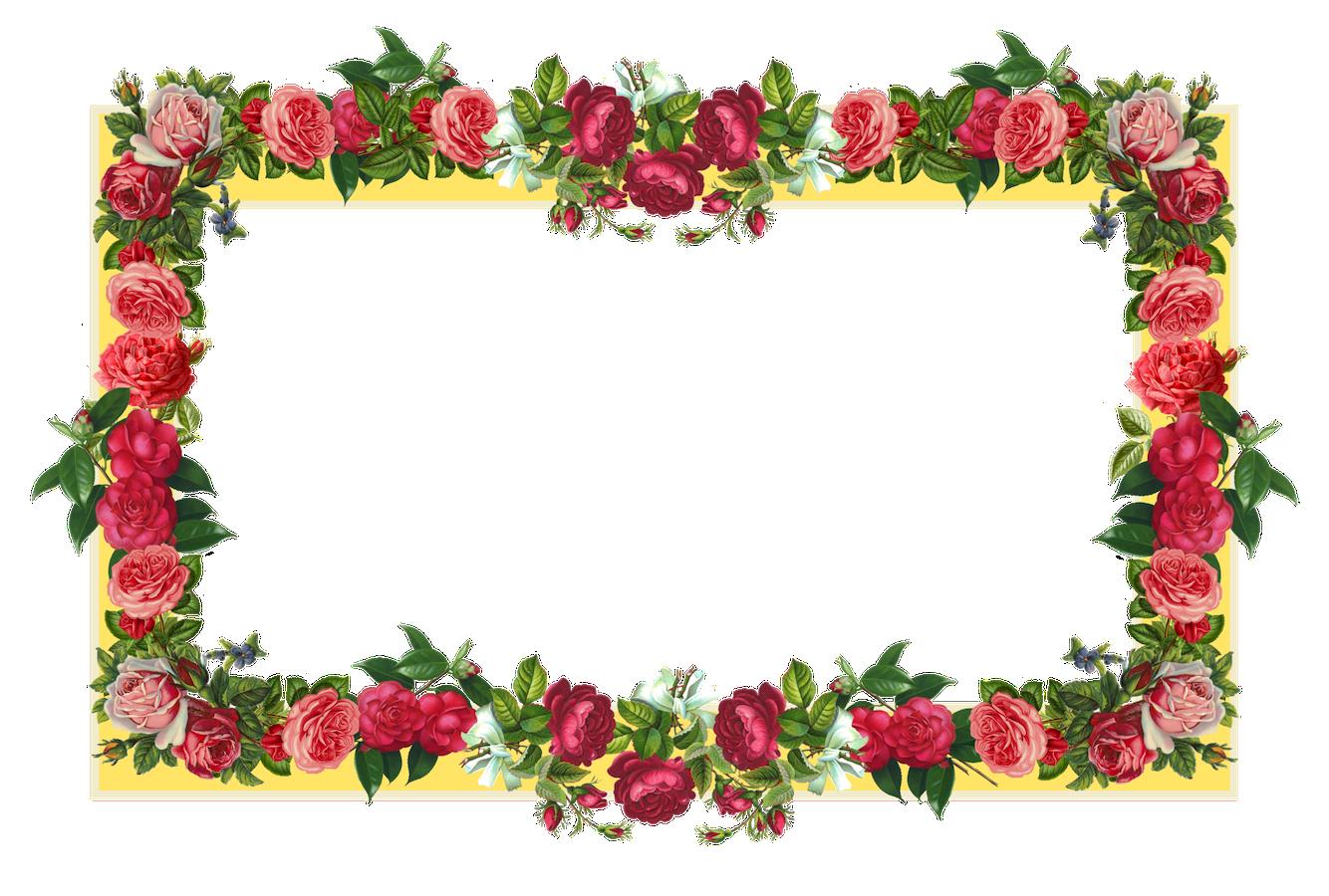 Flower Frame PNG Images Transparent Free Download.