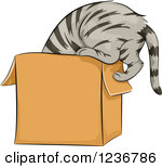 On The Box Clipart.
