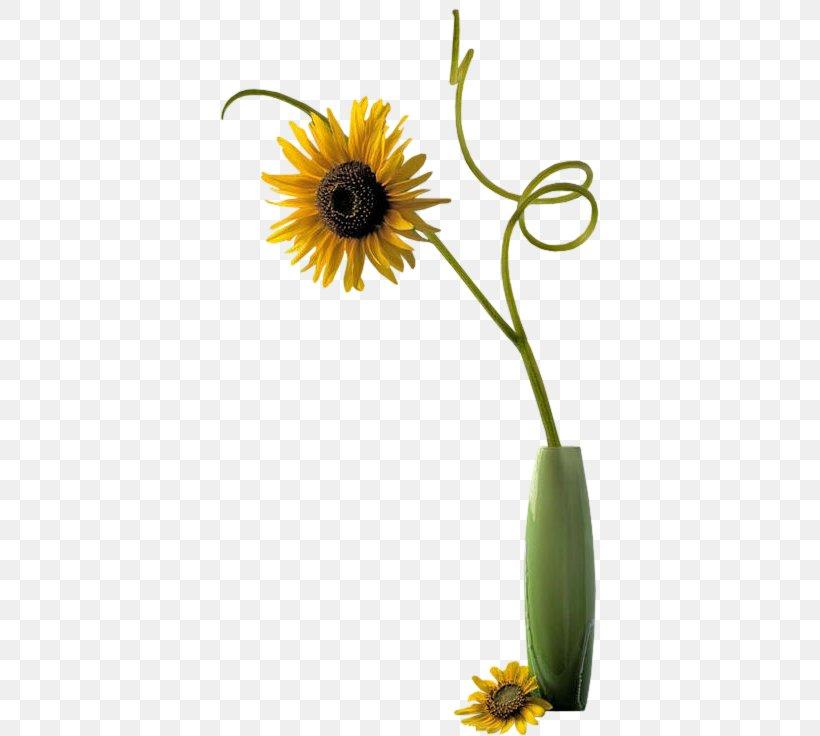 Flower Vase PhotoFiltre Clip Art, PNG, 379x736px, Flower.