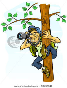 Photographing From a Tree Clipart Picture.