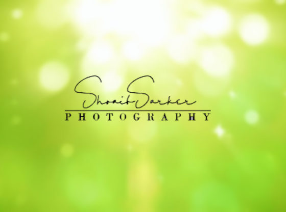 Signature Logo Design.