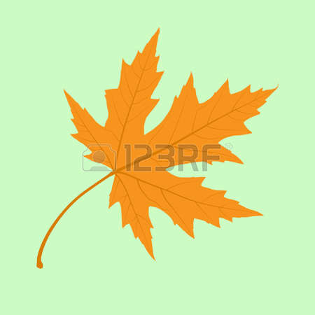 379 Photorealism Stock Vector Illustration And Royalty Free.