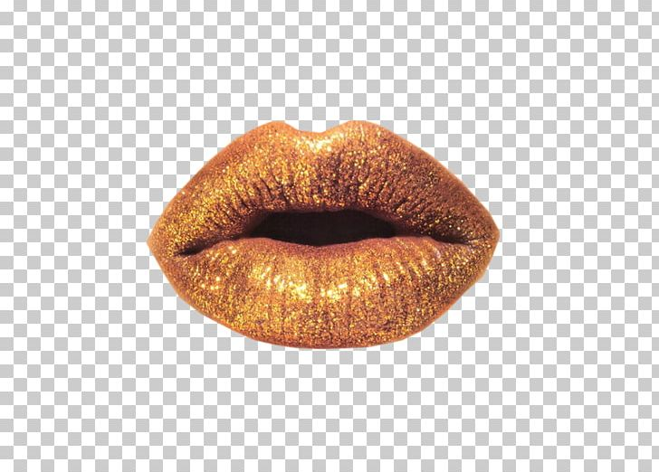 Lip PhotoScape Icon PNG, Clipart, Data, Euclidean Vector.