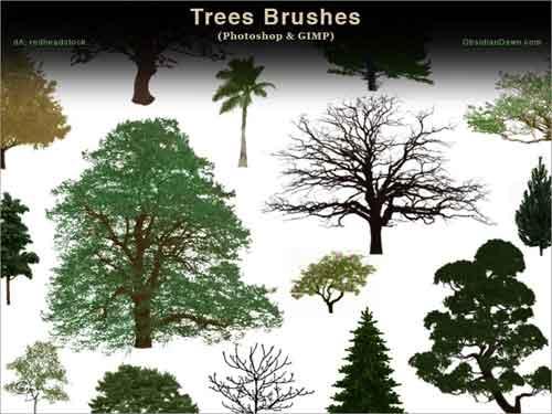 Tree Photoshop Brushes: 700+ Free Clip Art.