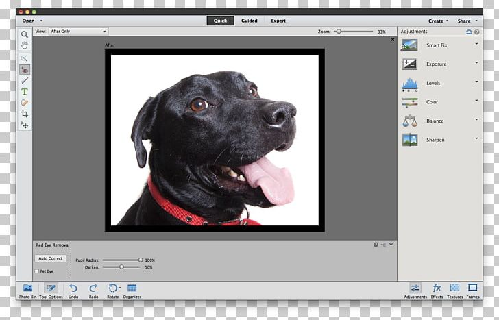 Adobe Photoshop Elements Tutorial PNG, Clipart, Adobe, Adobe.