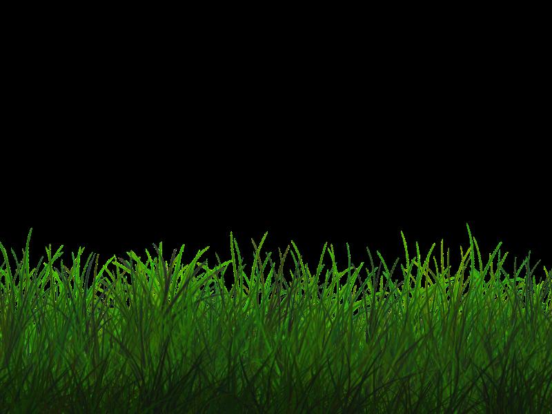 Free Transparent Grass Texture Seamless PNG (Nature.