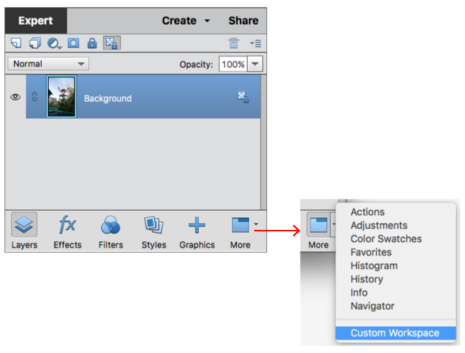 Panels and bins in Photoshop Elements.