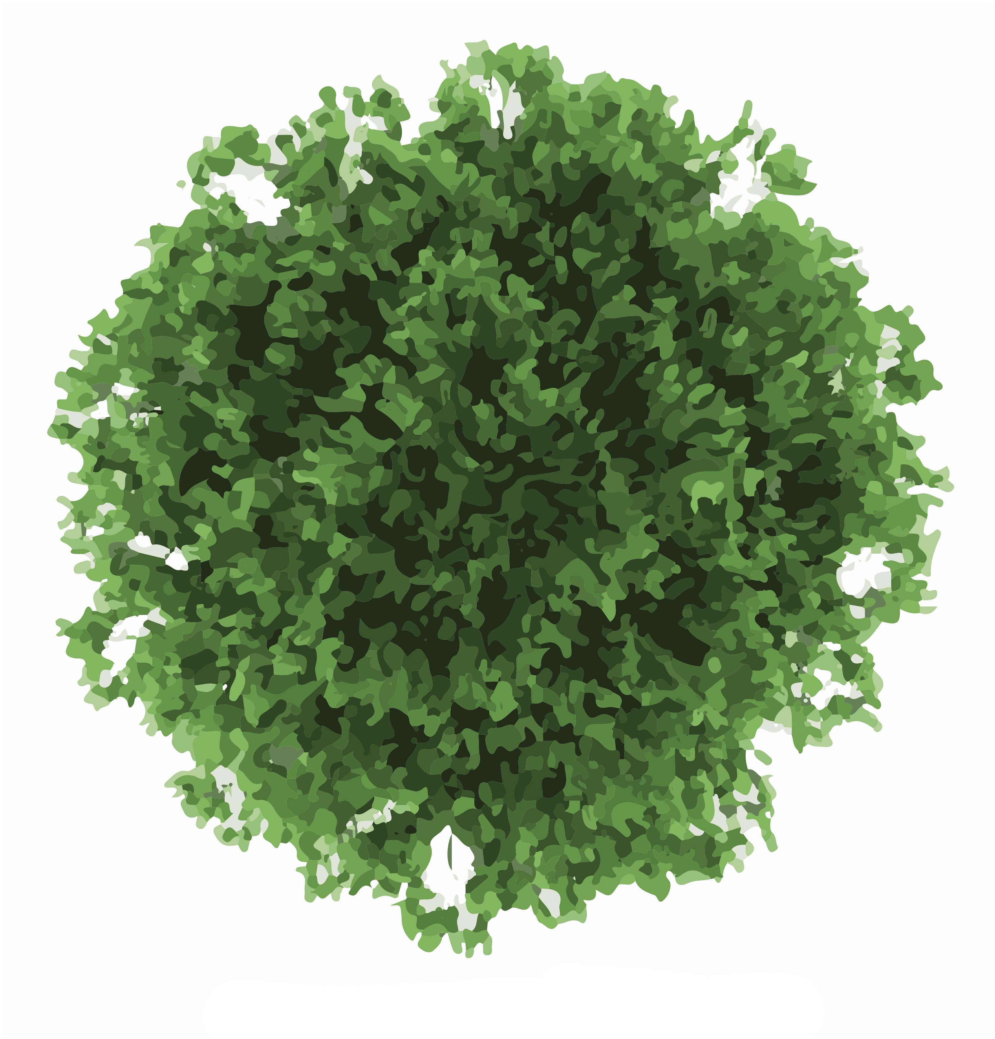 Motif: tree top pattern.