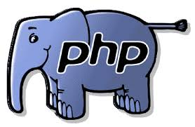 PHP Professional Training.