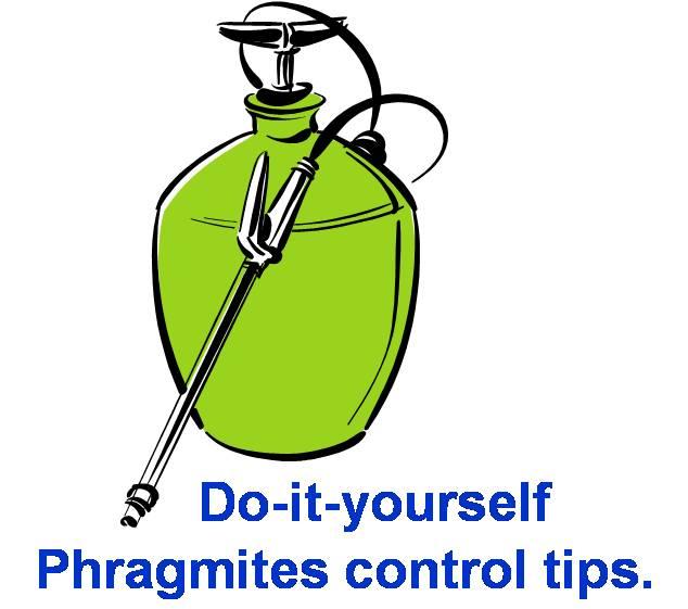 Delaware Phragmites Control Cost.