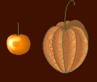 Skytopia Fruit Emporium: fruit pictures.