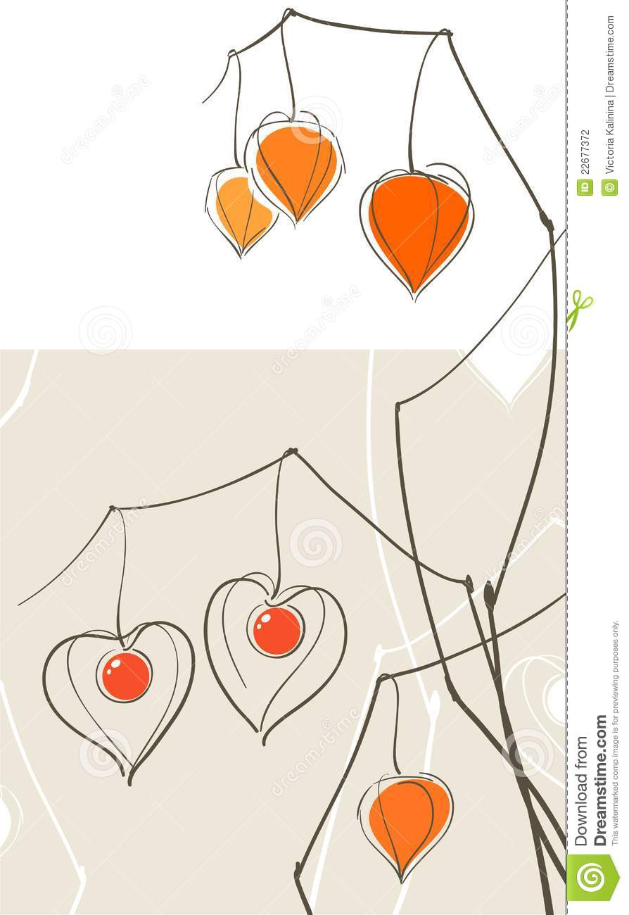 Physalis (chinese Lantern) Hearts Stock Photography.