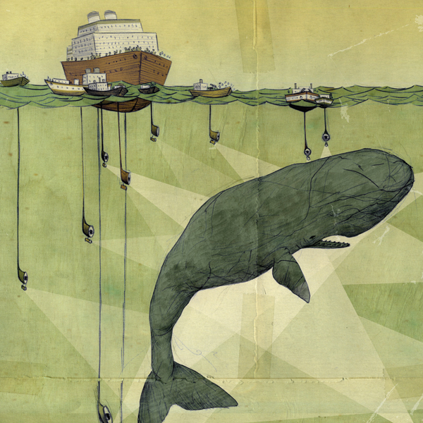 1000+ images about Pirates and Whales on Pinterest.