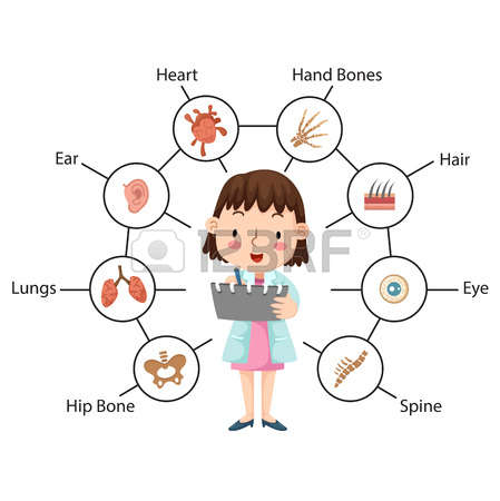 816 Physical Examination Stock Vector Illustration And Royalty.