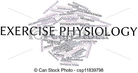 Stock Illustration of Exercise physiology.