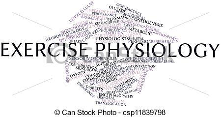 Stock Illustration of Exercise physiology.