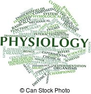 Physiology Illustrations and Clip Art. 9,929 Physiology royalty.