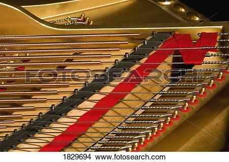 Stock Photo of Close up of piano strings 1829694.