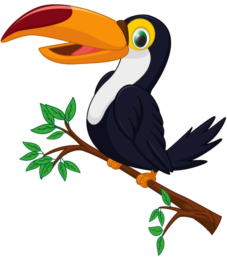 1000+ images about Clipart birds on Pinterest.