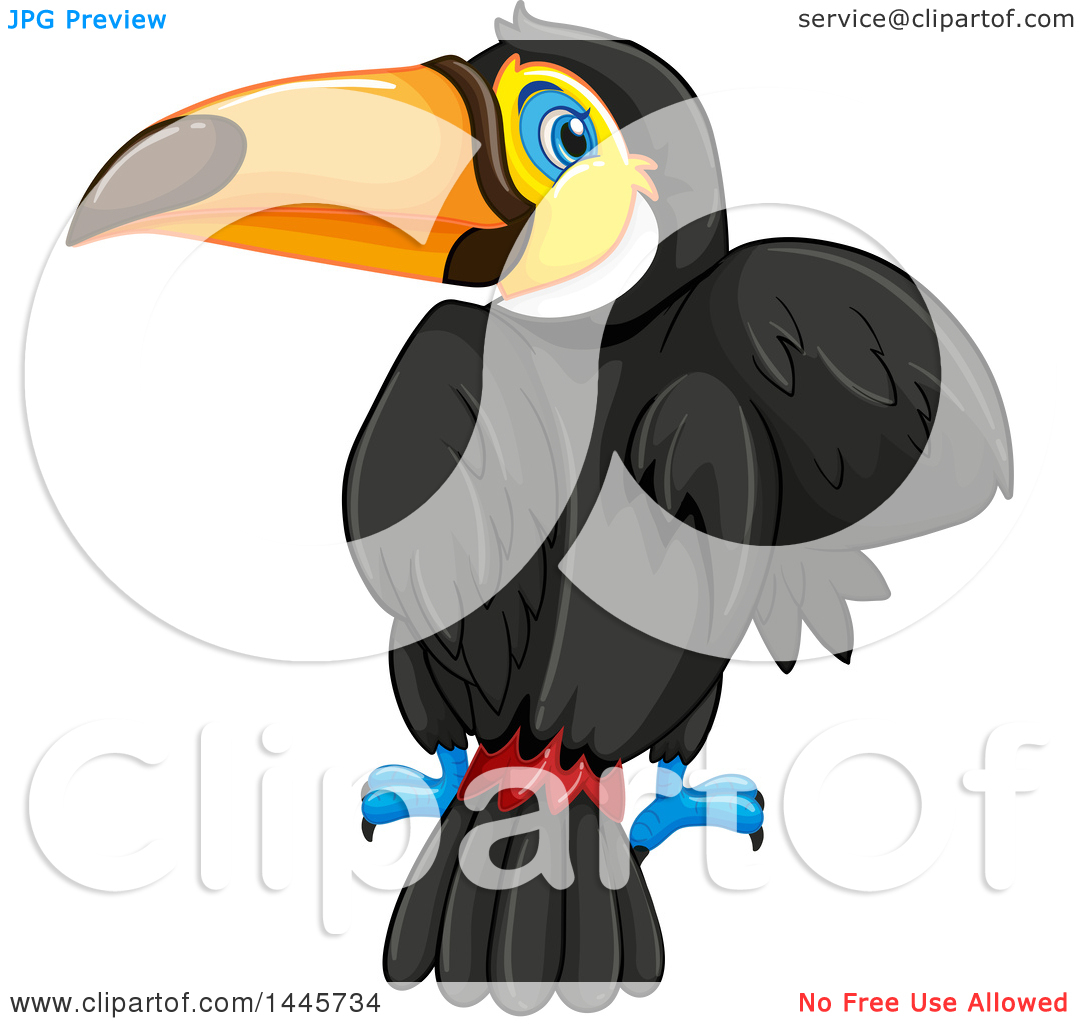 Clipart of a Toucan Bird Looking Back.